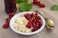 Fresh cottage cheese with red currants. Selective focus Stock Photography