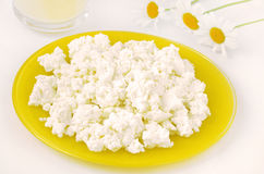 Fresh cottage cheese Royalty Free Stock Images