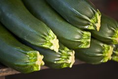 Fresh courgettes Royalty Free Stock Photo