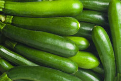 Fresh courgettes or zucchini Royalty Free Stock Photography