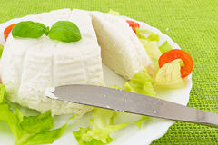 Fresh cow's milk cheese. Fresh ricotta cheese with lettuce and tomato Stock Image