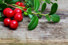 Fresh Cowberries on wooden background. Fresh Cowberries with some leaves on wooden background Stock Photography