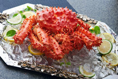 Fresh crab with cucumber. Fresh crab on a tray with cucumber and slices of lemon Stock Image