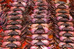 Fresh crab at the fish market royalty free stock image
