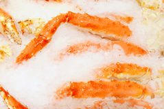 Fresh Crab Legs Royalty Free Stock Photos