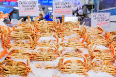 Fresh crab for sale at Pike Place Market  Seattle. Fresh crab on ice for sale at Pike Place Market in Seattle, Washington Royalty Free Stock Photo