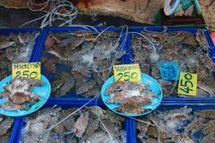 Fresh crab for sell Royalty Free Stock Image