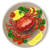 Fresh crab, served with vegetables. Stock Image