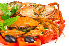 Fresh crab with vegetable and greens Royalty Free Stock Photo