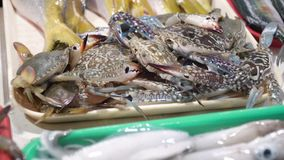 Cabs in Asian market. Fresh crabs in Asian market. Sale of fresh crabs fish in the Asian public store. Seafood on Market.Sea crabs lying on the shopboard at one Stock Photos