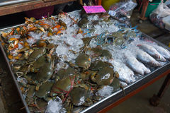 Fresh crabs and fish Stock Image