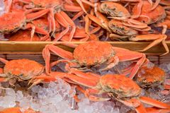 Fresh crabs on ice tray at market in Japan. Fresh crabs on ice tray at Kuromon Ichiba market in Osaka,Japan Royalty Free Stock Photography