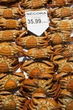 Fresh crabs infish market Stock Image