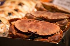 Fresh crabs Stock Photos