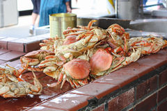 Fresh crabs at outdoor market Stock Image