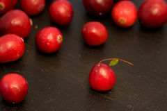 Fresh Cranberries. Fresh And Delicious Cranberries, Marco View Stock Image