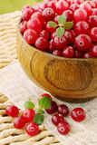 Fresh cranberries in a bowl Royalty Free Stock Photo