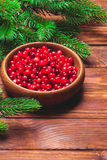 Fresh cranberries in bowl Royalty Free Stock Photos