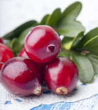 Fresh cranberries Stock Photo