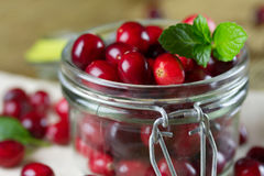 Fresh cranberries close-up.  S Stock Image