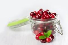 Fresh cranberries close-up. Stock Photo