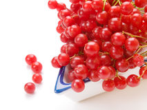 Fresh cranberries in dish Royalty Free Stock Photography