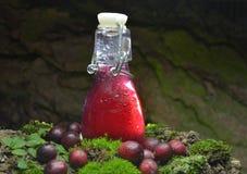 Fresh cranberries fruits juice bio organic. Juice health royalty free stock photo
