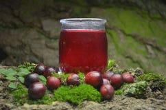 Fresh cranberries fruits juice bio organic. Juice health stock photo