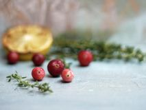 Fresh cranberries and herbs background royalty free stock images