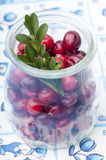 Fresh cranberries in jar Royalty Free Stock Photo