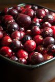 Fresh Cranberries Stock Images