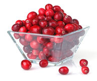Fresh Cranberries In Square Glass Bowl Stock Images