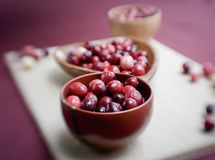 Fresh cranberries for thankgiving stock photography