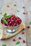 Fresh cranberries. On a wooden table Royalty Free Stock Photo