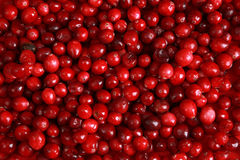 Fresh cranberry background Royalty Free Stock Photos