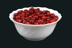 Fresh cranberry in bowl. Black background stock photos
