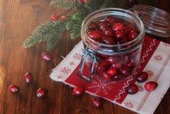 Fresh cranberry Royalty Free Stock Image