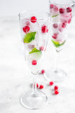 Fresh cranberry in ice cubes in glasses on white background mock-up Stock Image