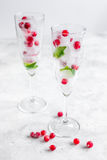Fresh cranberry in ice cubes in glasses on white background mock-up Stock Images