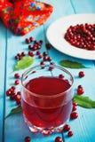 Fresh cranberry juice Royalty Free Stock Image