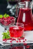 Fresh cranberry juice with mint Stock Photos
