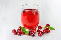Fresh cranberry juice. Stock Photography