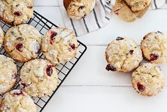 Fresh Cranberry Muffins Shot From Above. Fresh cranberry muffins cooling on a bakers rack over a rustic white table background. Image shot from above with free stock photos