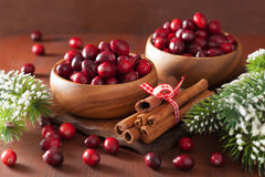 Fresh cranberry in wooden bowls, winter decoration Stock Photos