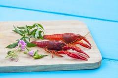 Fresh crayfish on wood Stock Image