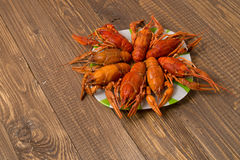 Fresh crayfishes on the plate Royalty Free Stock Images