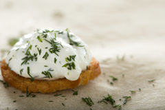 Fresh cream cheese spread. Close up of one fresh cream cheese spread with dill on bake rolls Stock Image