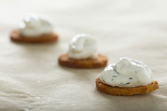 Fresh cream cheese spread. With dill on bake rolls Royalty Free Stock Image