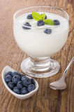 Creamy natural yogurt with blueberries Stock Images