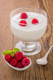 Creamy natural yogurt with raspberries Royalty Free Stock Photo